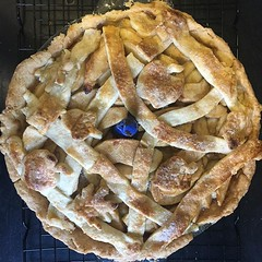 I made this apple pie and then a pot fell off the wall in my kitchen and smooshed it. But I got this photo first! #applepie #pie