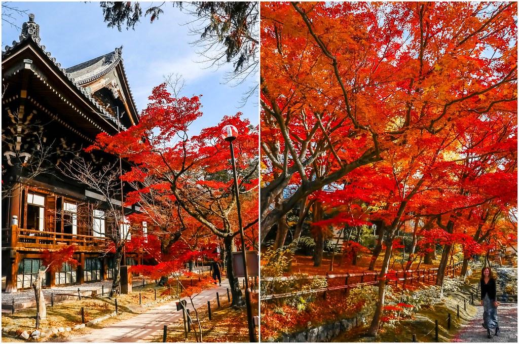kyoto-shinnyodo-temple-alexisjetsets