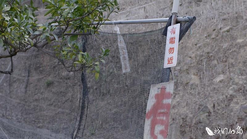 十二年前,農民詹東運因為不堪猴害,參考國外經驗,自行設計防猴電網。