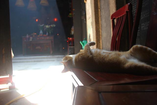 Macau, 05/06/2012