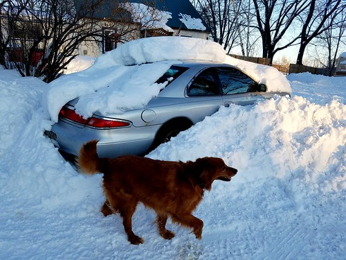 Someone shovel my car out?