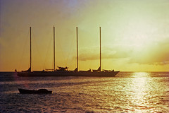 Guadeloupe, mai 1978.