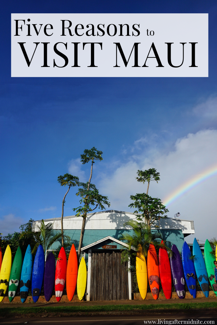 Five Reasons to Visit Maui Hawaii