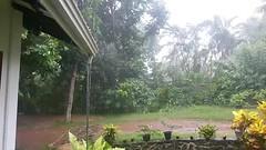 Sri Lanka. Tropical heavy rain