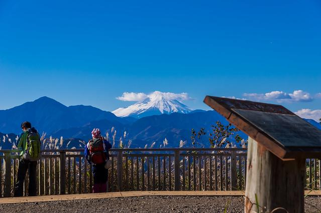 一丁平より仰ぐ富士山
