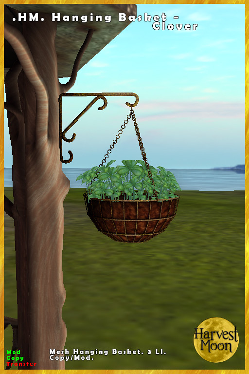 Harvest Moon – Hanging Basket – Clover