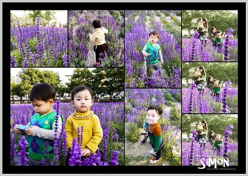 台糖花卉園區06