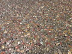 Plum Creek Exposed Aggregate Concrete Close Up